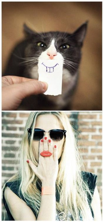 Happy feline=fashion friday cheeky chops!Image from an infinit eyewear campaign paired with a shot found on catasters.