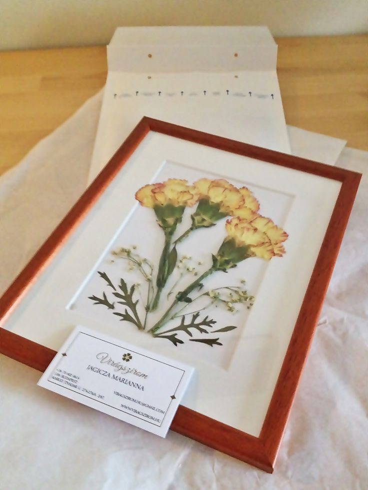 pressed flower picture mailed to