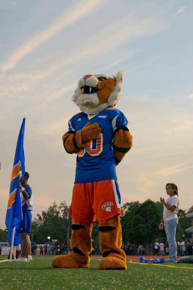 delaware state university admission essay