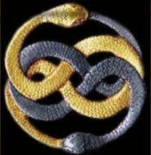 kundalini snake - Google Search