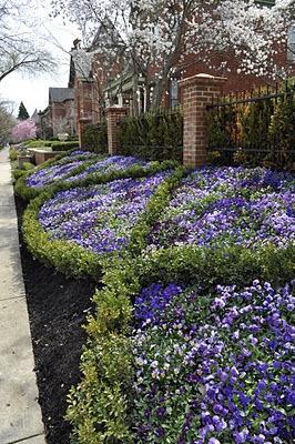 Blue garden borders