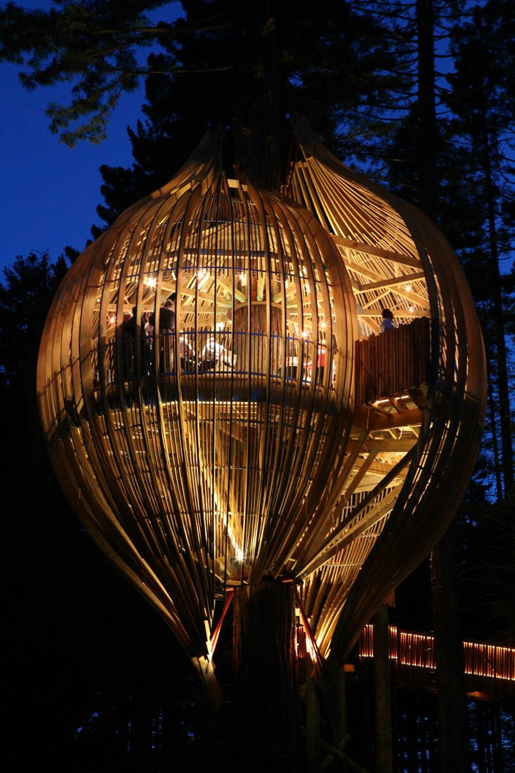 YELLOW TREEHOUSE RESTAURANT, NEW ZEALAND | Real WoWz