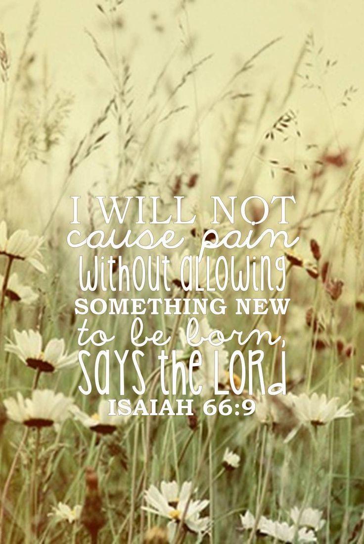 isaiah 66:9 || Three Hundred and Sixty-Five Days... - Carolina Fireflies