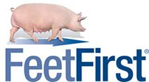 FeetFirst Swine Lameness Prevention