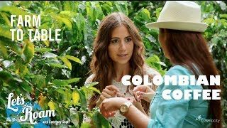 Colombian Coffee From Farm to Table - Let's Roam Colombia wi