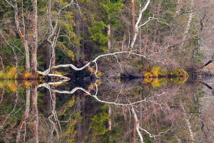 Зеркальные пейзажи от участников конкурса трэвел-фотографии — Российское фото