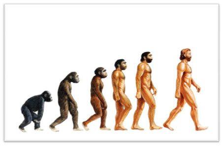 7. La evolución fue aceptada como un hecho por la comunidad científica y por buena parte del público en vida de Darwin, mientras que su teoría de la evolución mediante selección natural no fue considerada como la explicación primaria del proceso evolutivo hasta los años.