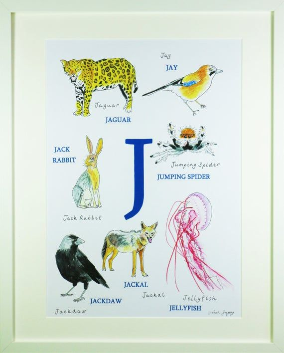 Animal Alphabet Letter J Animals Beginning With J Children S Picture Baby First Christmas Children S Print In 2020 Animal Alphabet Letters Kids Art Prints Nursery Art Boy