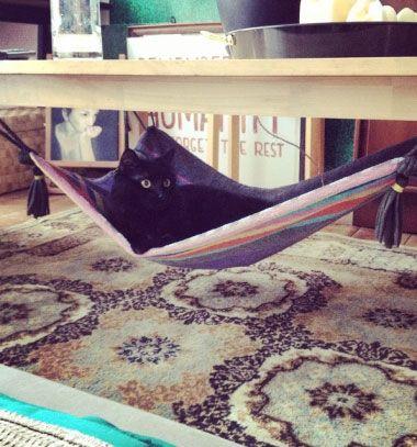DIY magic carpet cat hammock from a towel // Asztal alá rögzíthető varázsszőnyeg macskaágy házilag // Mindy - craft tutorial collection // #crafts #DIY #craftTutorial #tutorial #CraftsForPets