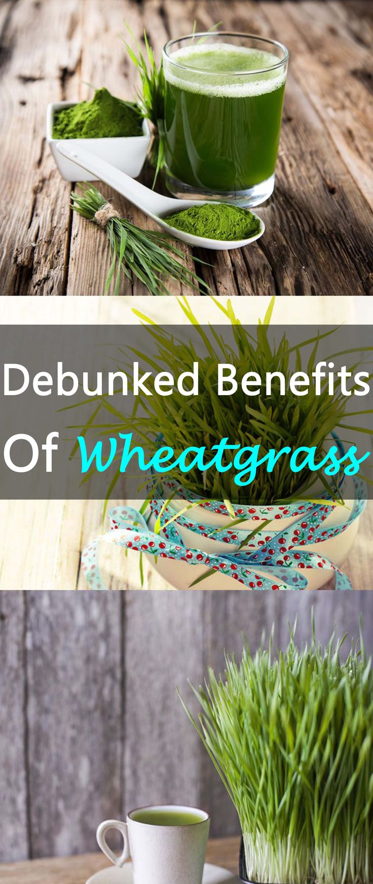 "Intrigued by wheatgrass? Wondering if you should jump on the green shot bandwagon? This ""superfood"" is rumoured to have many health benefits but not all are supported by hard facts. Read on to find out what science has to say about the properties of wheatgrass and decide for yourself if you should, perhaps, give it … www.bembu.com"