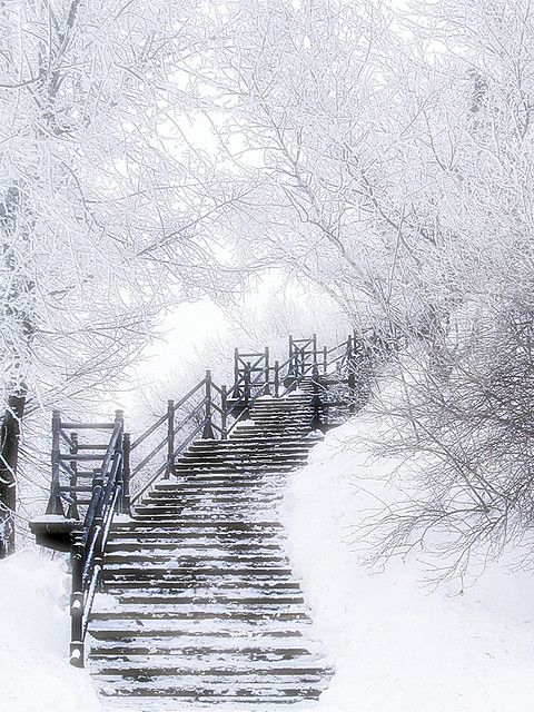 Beautiful!: Winter Scene, Paths, Stairs, Winter Wonderland, White Christmas, Places, Stairways, Heavens