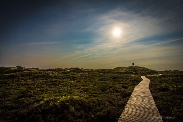 Romantische Dünenlandschaft auf der Insel Amrum