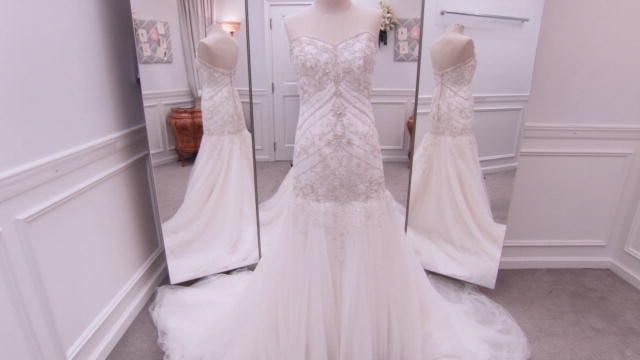Wedding Dress Details | Say Yes to the Dress | TLC