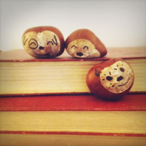 chestnut faces