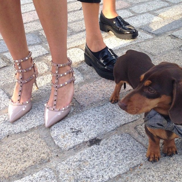 #SergioShoeHunter got distracted by these nude patent Valentino Rockstuds!
