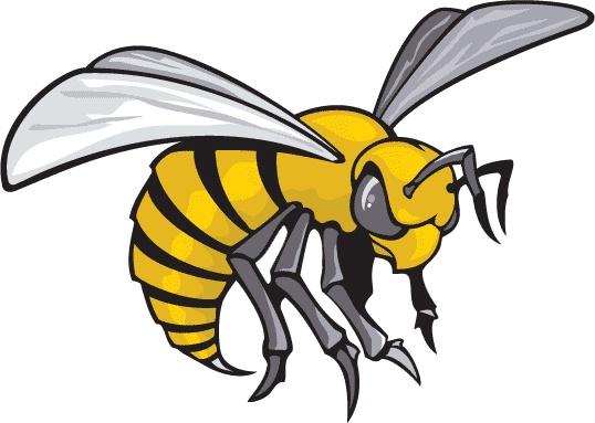 картинки злых пчел разных