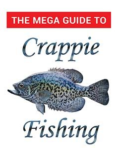 Helpful Guidelines to help you in Crappie Fishing - https://glimpsebookstore.com/helpful-tips-to-help-you-in-crappie-fishing/