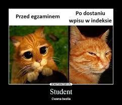 Ola ma bloga: Sesja z głowy, studentom lżej :) Podsumowanie seme...