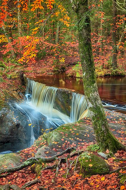 Enders Falls State Park, Granby, Connecticut   Enzo Figueres