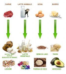 La transizione – primi passi verso un'alimentazione migliore (parte prima)