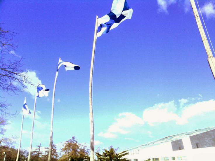 Finland Live!: Días de Bandera en Finlandia  Días de Izado de Bandera, banderas por todas partes en Finlandia #Finland #Finlandia #Blog