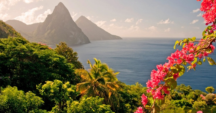 St. Lucia Here We Come! See you in February 2012!