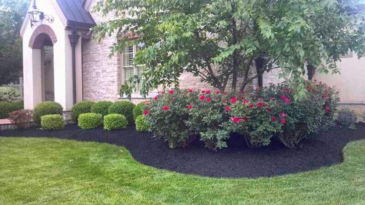 Front yard landscaping idea pretty azaleas and boxwood for Front yard landscaping plants