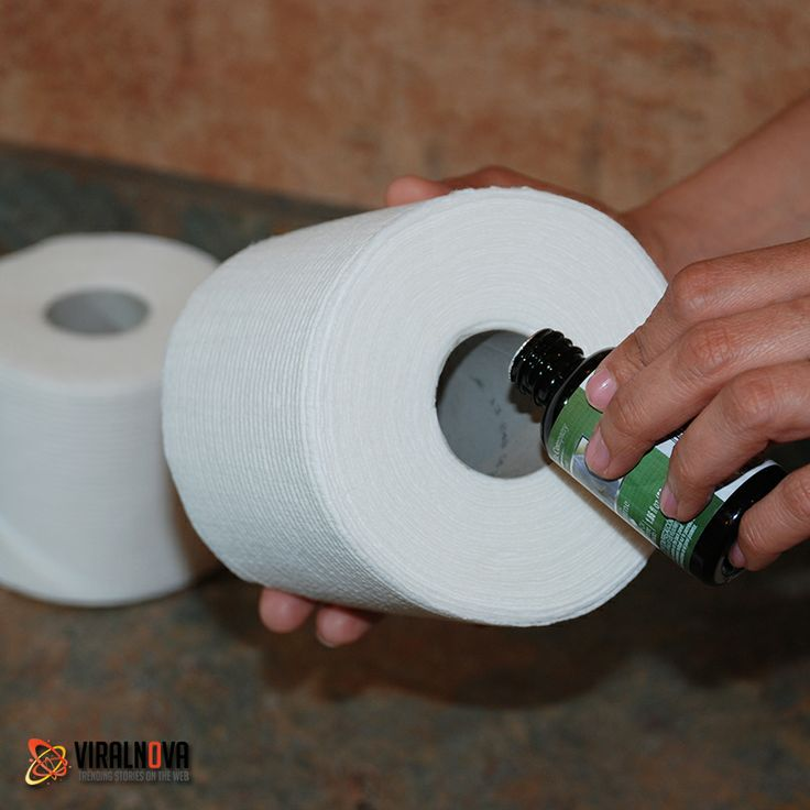 Make your bathroom smell nice by pouring a few drops of essential oil on the inside of a TP tube.Essential Oil
