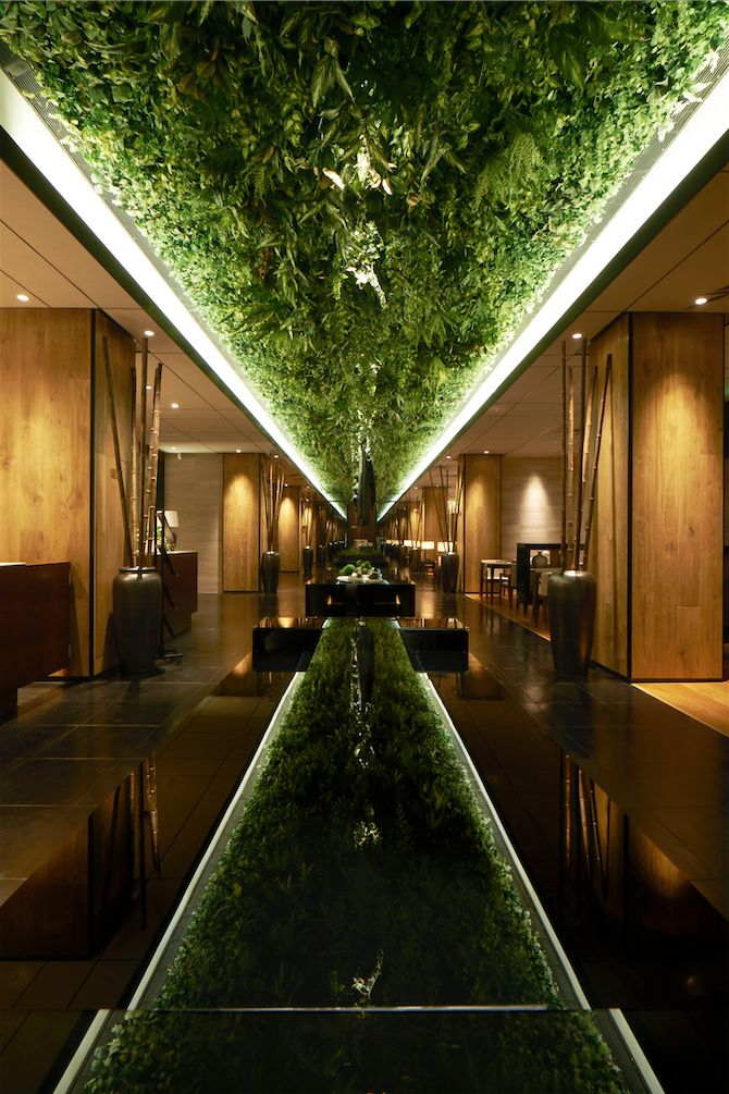 """Green"" Ceiling 