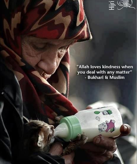 Allah loves kindness when u deal w/ any matter - Bukhari Muslim...I love this photo!!!...kd