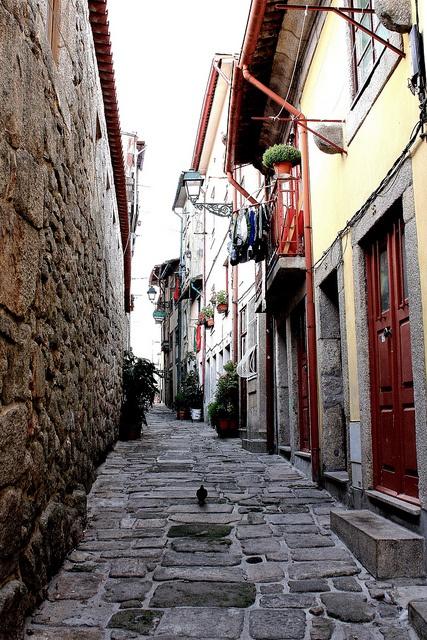 Porto street by Mónica Isa Pinto, via Flickr