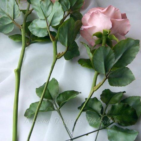 Процесс создания розы. Набор стебля ведется постепенно, с прочной фиксацией листьев, через клей и ленту. Вот для чего нужны были длинные ножки проволоки на листьях. Самое время сделать на стволе шипы и пеньки Цветы из флористической полимерной глины. Татьяна Пянзина. Первоцвет.