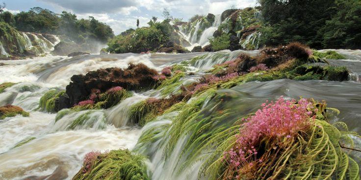 Feuchtgebiete sind unverzichtbar für unsere Trinkwasserversorgung, bieten zahllosen Arten einen Lebensraum und sind wichtig für den Hochwasserschutz.