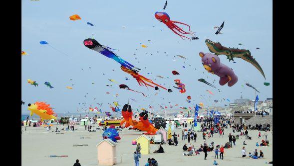 """Festival internacional de """"cerf volant"""" un espectaculo visual hermoso en Berck! Francia"""