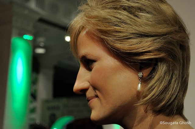 """princess diana research paper Princess diana """"they say it is better to be poor and happy than rich and miserable, but how about a compromise like moderately rich and just moody."""