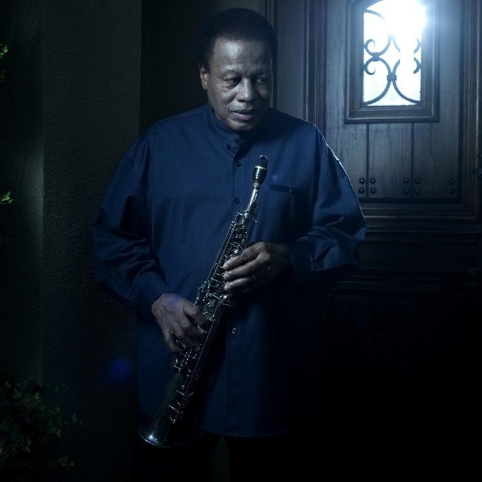First Listen: Wayne Shorter, 'Without A Net'
