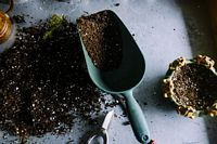 Soil & Plant Cultivation What are the best sites to buy top soil online? Where can I find cheap compost? Who is Alan titchmarsh? - We have the answers to all of these questions right here! Of course we all know who Alan is, but when it comes to buying compost, soil and fertilizers, the answers are less obvious.