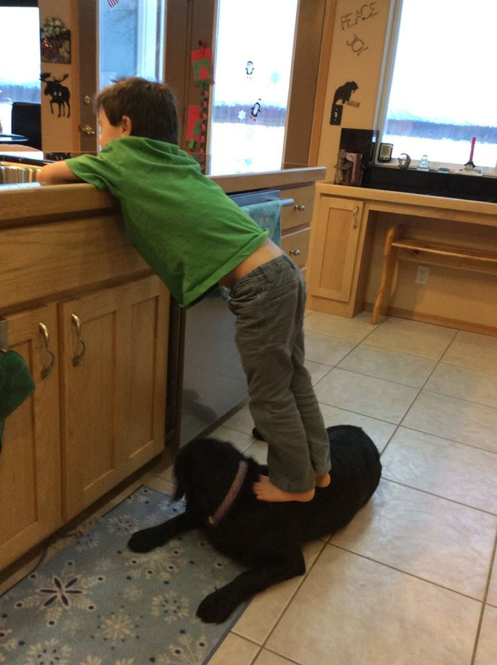 1000 Images About Steps For Kids To Reach Sink On