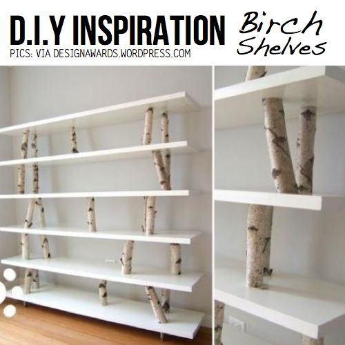 Birch shelves. I like this but would make it look like the tree is coming through the shelves if that makes sense.
