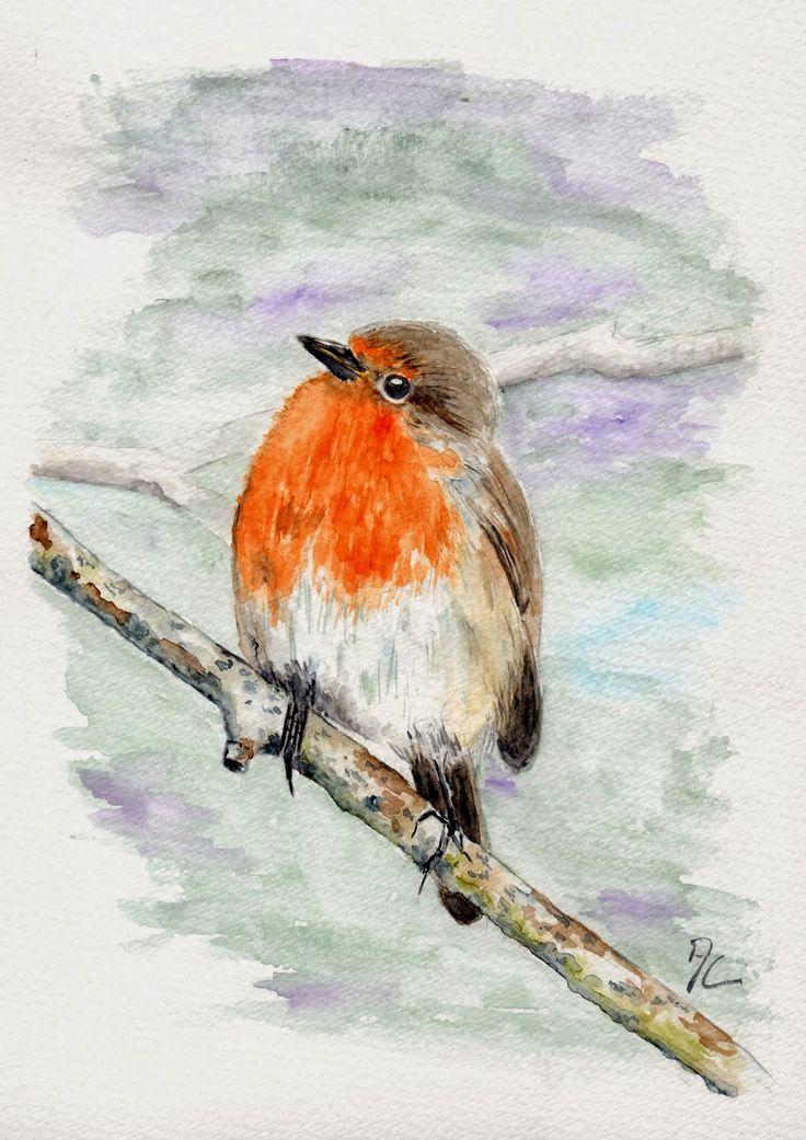 56 best Acuarelas de aves color naranja images on Pinterest ...