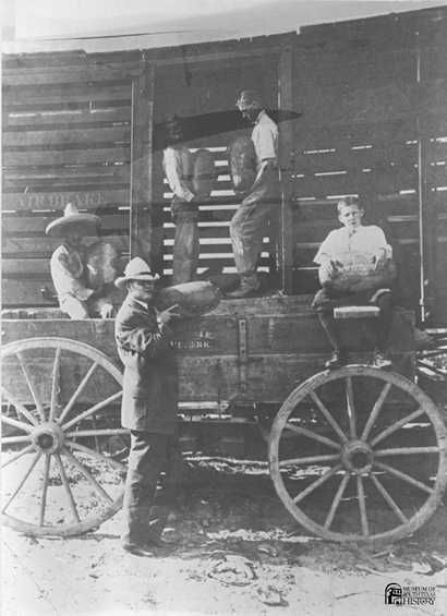 Hidalgo County Judge Chapin, Texas old photo.  Town was named after him and later changed to Edinburg, TX       LK