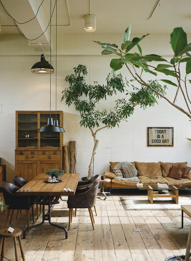 Indoor trees look really beautiful,   especially combined with an earthy color palette.