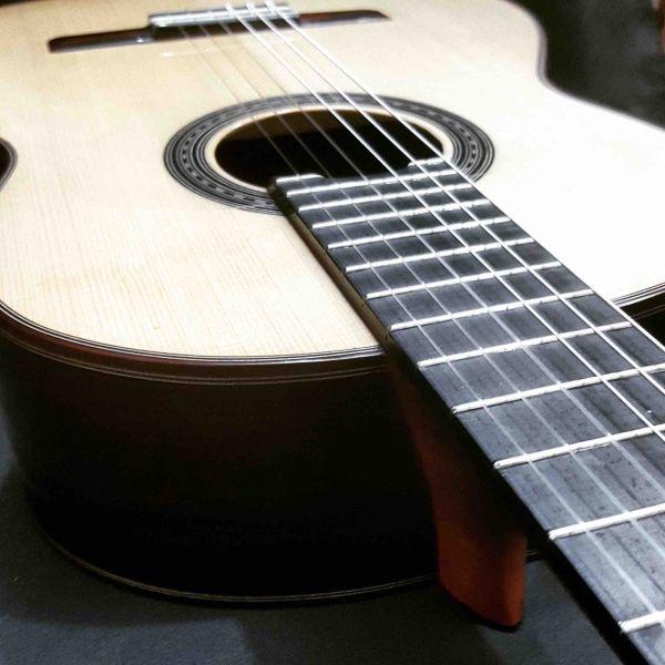 Guitarra Profesional Violão