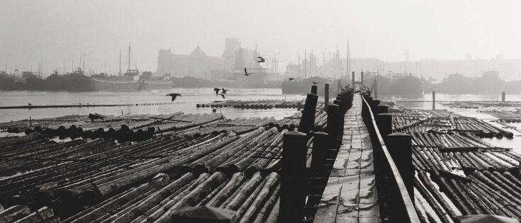 De Houthaven langs het IJ in het westelijk havengebied van Amsterdam. De haven bestaat uit vier delen. Oude Houthaven, Houthaven, Nieuwe Houthaven en Minervahaven. De Houthaven werd gegraven in 1876, tegelijkertijd met de aanleg van het Noordzeekanaal. Het was de eerste gegraven haven van Amsterdam. Omdat het vervoer van hout steeds meer over de weg plaatsvond, werden de insteekhavens in 1945 gedempt.
