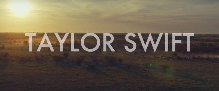 Joseph Kahn defiende a Taylor Swift por ser acusada de racismo.
