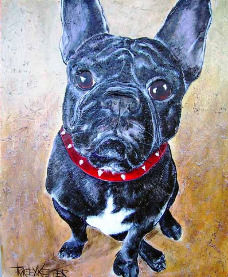 This Frenchie loved his food! The only way I could get this pup to sit for a photograph was to bribe him with a schmacko! I really enjoyed painting all the skin folds on this pup's face! TK PRIVATE COMMISSION 2004 100cm x 120cm