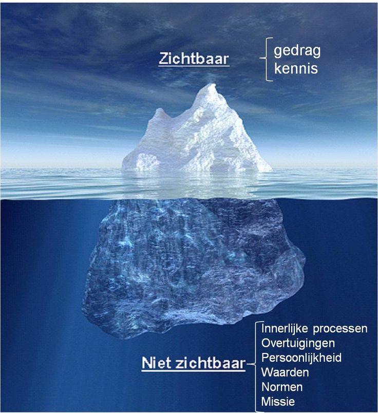 De relatie tussen kennis en overtuigingen in het change management