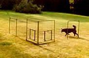 Adam Miklosi onderzoekt veel over hondengedrag hij was in 2005 voor het eerst in Nederland op het Tinley HAP congres