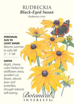 $1.69. Black-Eyed Susan. Bright, cheery color, perfect for wildflower areas, attracts bees and butterflies! NATIVE.