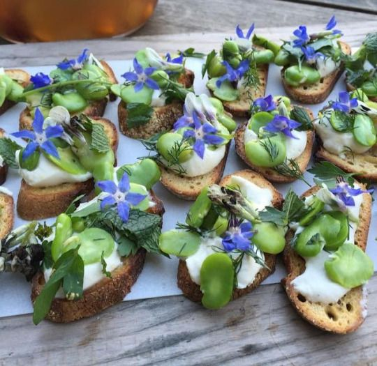 FAVA BEAN CROSTINI. smoked almond cheese. lemon. herbs. #plantfood ...